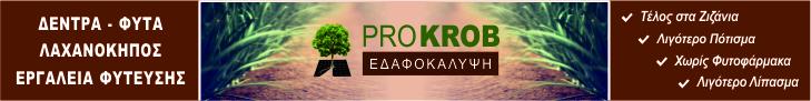PROKROB 728x90 πάνω από περιεχόμενο