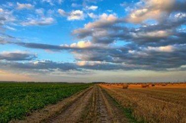 Ενημέρωση Αγροτών Φυτικής παραγωγής για το Μέτρο 16 του προγράμματος «Συνεργασία-Καινοτομία του ΠΑΑ2014-2020»